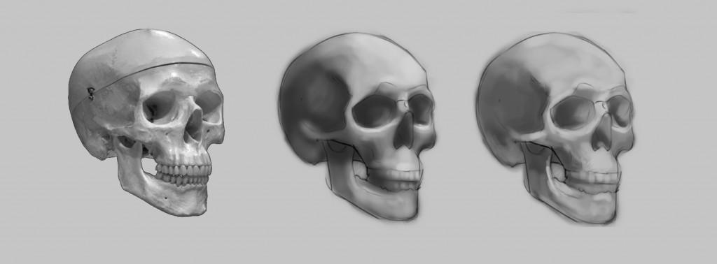 skull_exercise