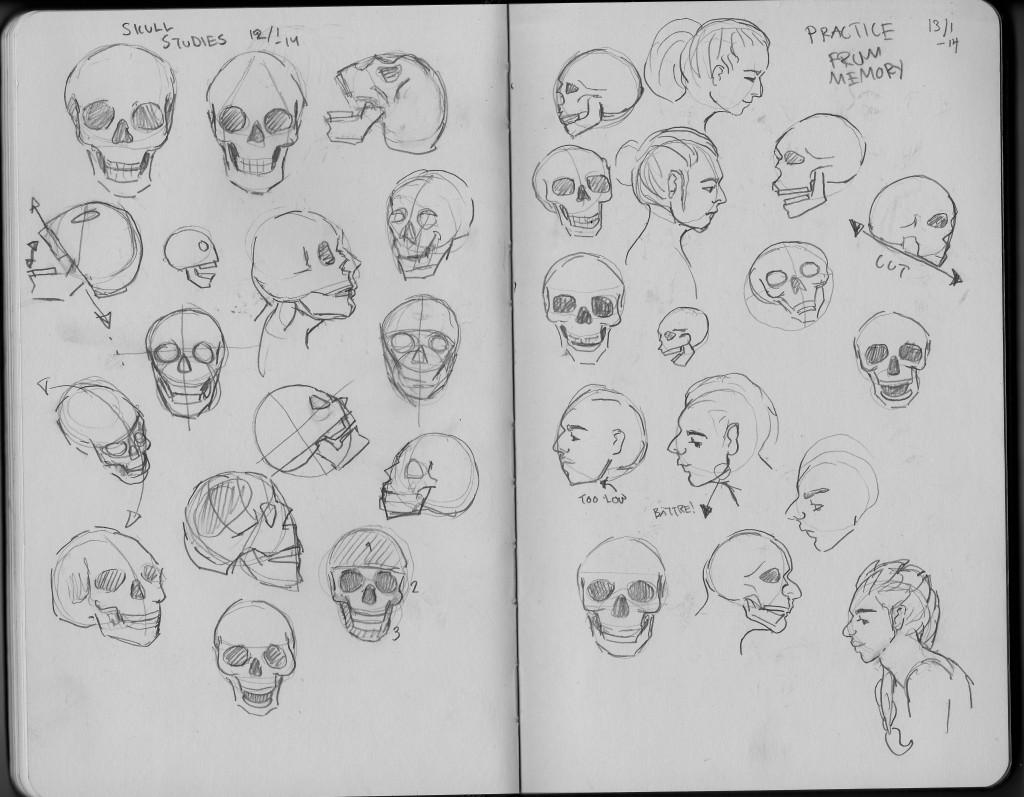 skulls02_casen_jan_14