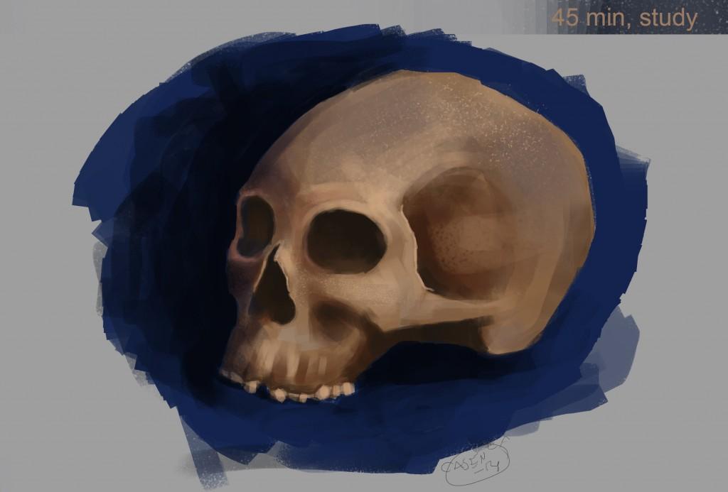 skullstudy_casen_jan_14