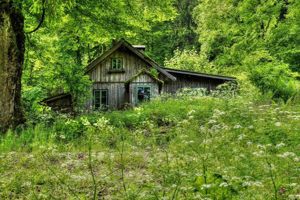 old_house_in_the_woods_by_austriaangloalliance-d69q11m
