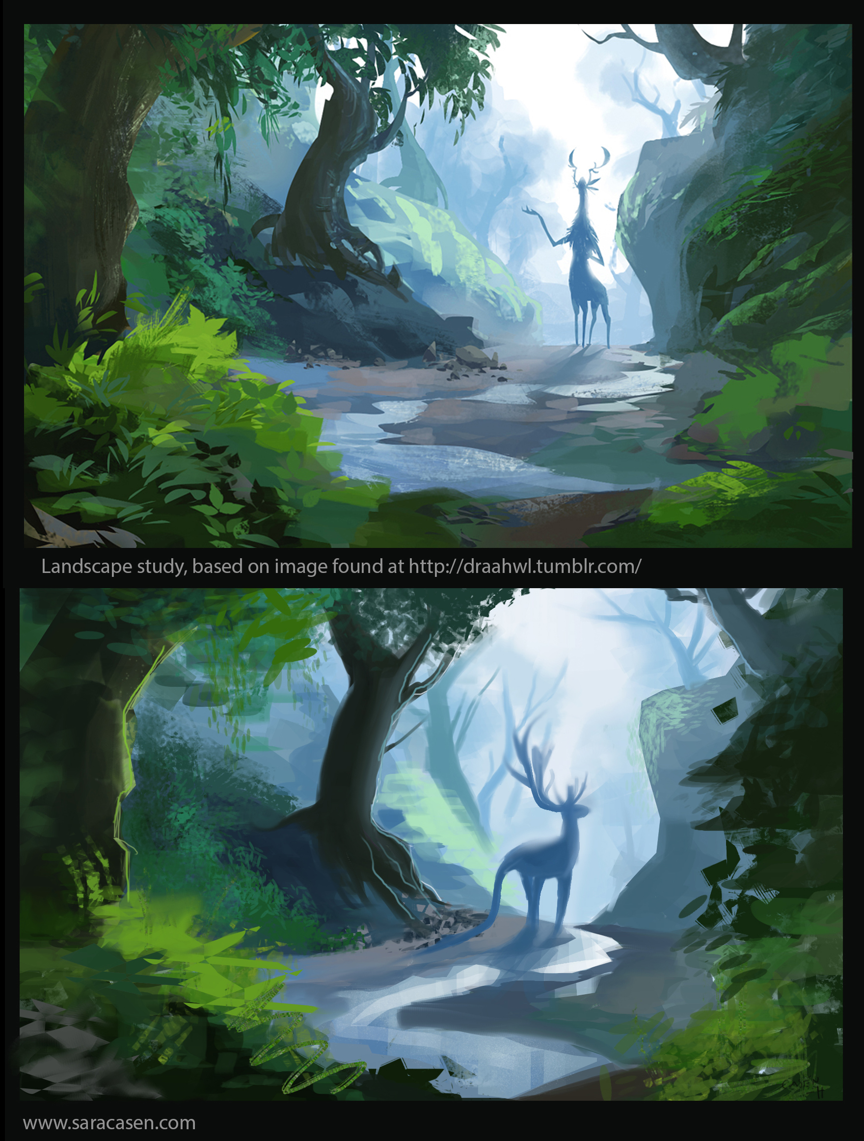 study_forest_02