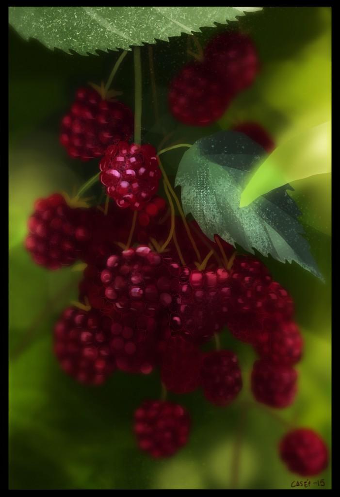berries_2_casen