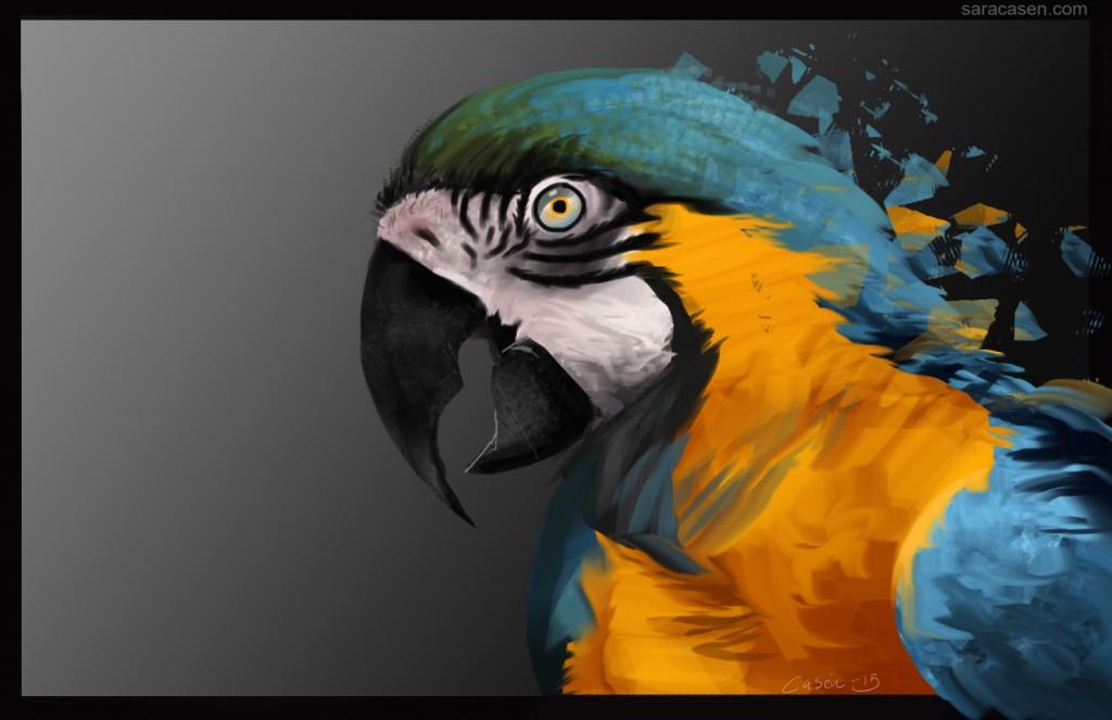 parrot_sara