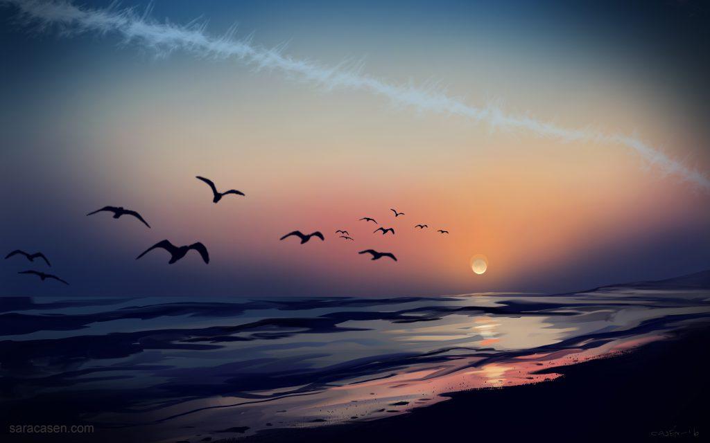 sunset 02 2016